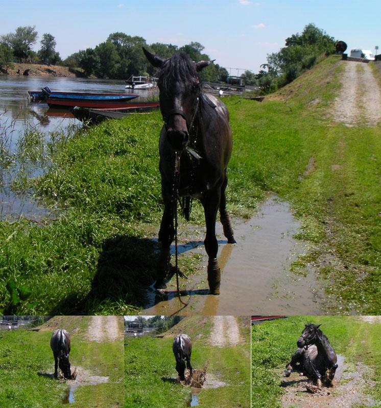 Balnéo en bord de Loire