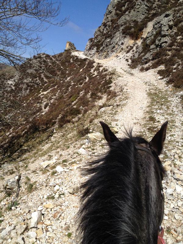 Chemin dans la montagne