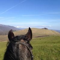 Querida et la chaîne des Pyrénées